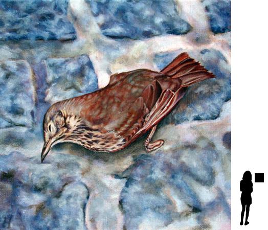 Dood vogeltje, olieverf op linnen, 40 x 40 cm., 500,- incl. lijst