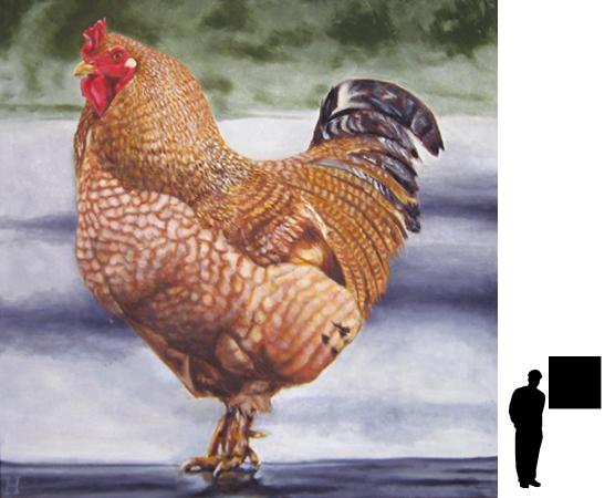 Rode kip, olieverf op linnen, 80 x 80 cm., 700,- incl. lijst