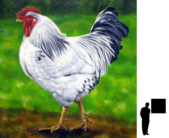 Witte kip, olieverf op linnen, 80 x 80 cm., 700,- incl. lijst.